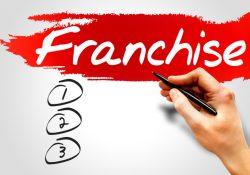 Что такое франшиза. Виды франшиз