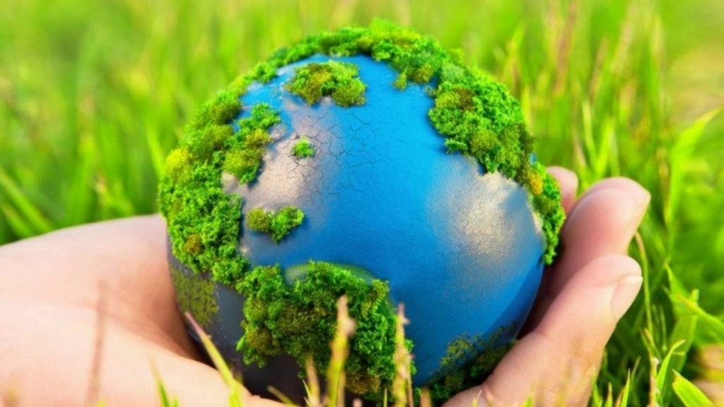 Бизнес-идеи, связанные с природными ресурсами