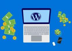 9 способов заработать деньги с WordPress