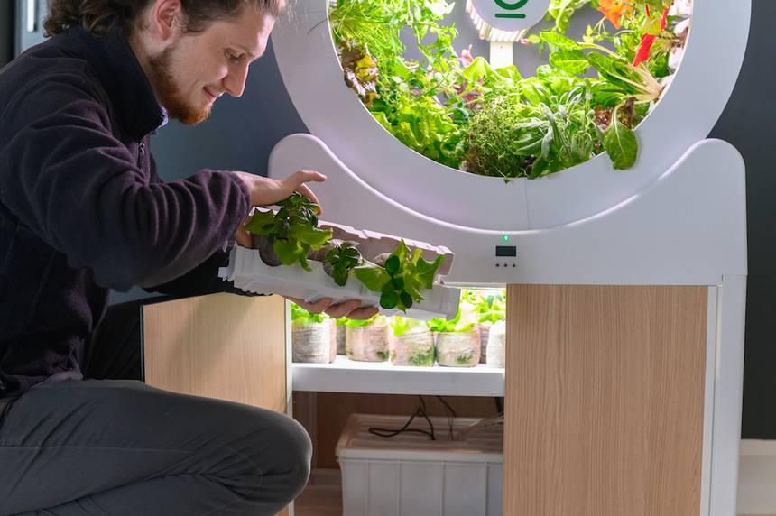Бизнес идея вращающийся сад OGarden Smart