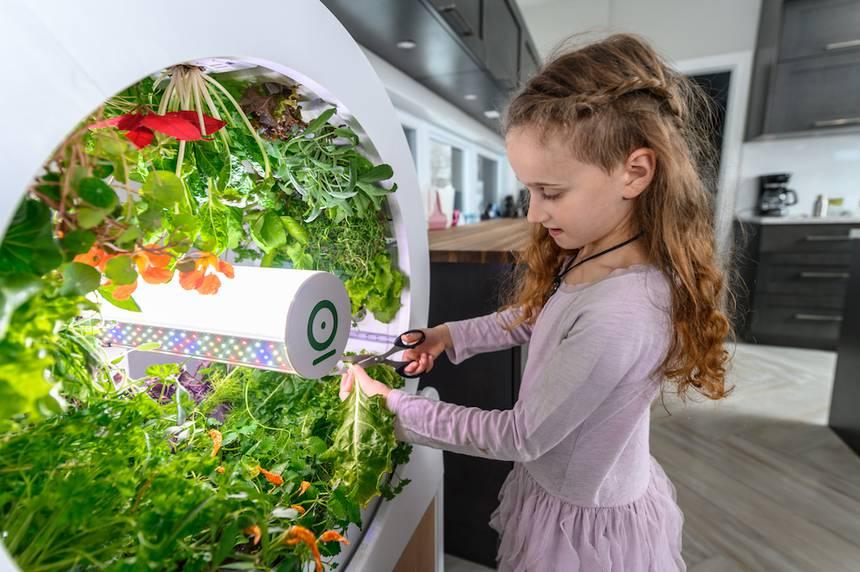 Вращающийся сад OGarden Smart