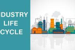 Промышленный жизненный цикл