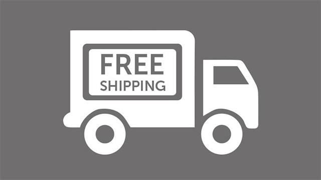 Предлагаем бесплатную доставку